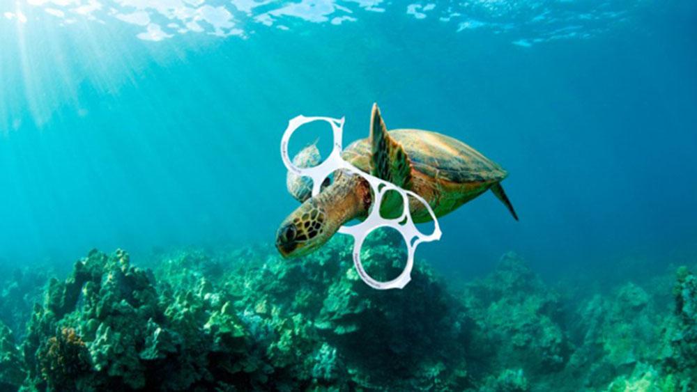tortuga atrapada per plàstic